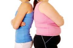 肥胖稀薄 库存图片