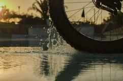 肥胖自行车轮子 库存照片