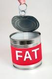肥胖词 免版税库存照片