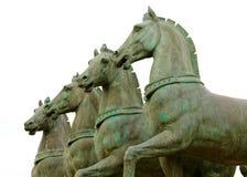 肩并肩四个马雕象 免版税库存照片