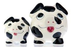 肩并肩母亲和小猪 免版税库存照片