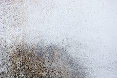 肮脏和老白色墙壁 免版税库存图片
