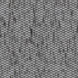 肮脏无缝的标度蛇皮的纹理 免版税图库摄影