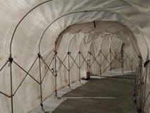 肮脏的可撤回的工业隧道走道树荫和湿保护者从雨室外走道的 库存照片