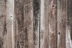 老肮脏的木背景/纹理 免版税库存图片