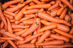 肮脏的未洗的红萝卜篮子  库存图片