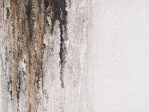 肮脏的油腻墙壁 免版税图库摄影