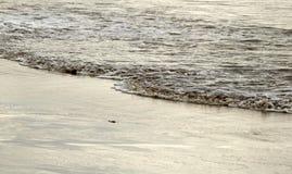 肮脏的泡沫似的波浪 库存图片