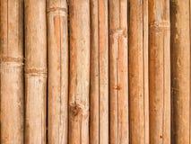肮脏的竹纹理 库存图片