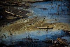 肮脏的水在池塘 免版税库存图片