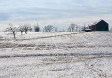 肯塔基冬天 免版税库存照片