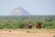 肯尼亚 图库摄影