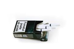 肯特香烟 图库摄影