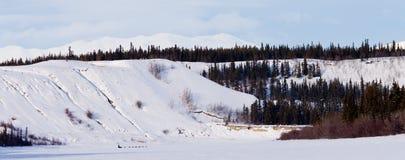 育空冬天横向和狗下拉式musher雪撬 库存图片