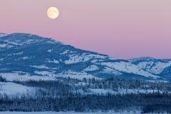 育空加拿大冬天横向和满月上升 免版税库存图片