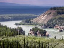 育空河加拿大 免版税库存图片
