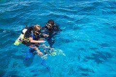 水肺下潜在红海 免版税库存照片