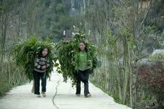 肺凸轮村庄的少数族裔孩子 免版税图库摄影