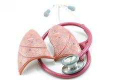 肺听诊器 图库摄影