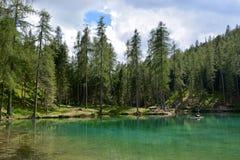 肾上腺皮质激素D ` ampezzo的美丽的鲜绿色湖在白云岩的心脏 免版税库存图片