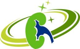 肾脏徽标 图库摄影