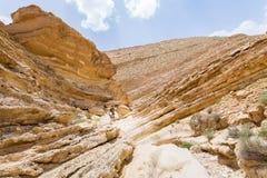 背包徒步旅行者人走的沙漠峡谷山峭壁 免版税库存照片
