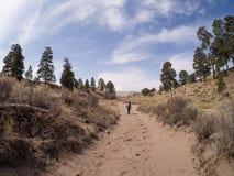 背包徒步旅行者沿桑迪道路走在伟大的沙丘全国P 免版税库存图片