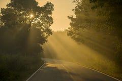 背后照明和太阳火光漫长的路 库存照片
