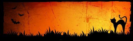 背景万圣节标头 免版税库存照片