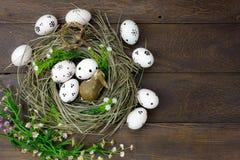 背景上色了复活节彩蛋eps8格式红色郁金香向量 愉快的复活节彩蛋也使犹太教教士痛苦 库存图片