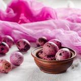 背景上色了复活节彩蛋eps8格式红色郁金香向量 桃红色一个小的鸡蛋被绘 库存照片