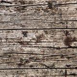 背景不规则的结构木头 库存图片