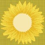 背景与向日葵瓣等高的边界框架 免版税库存照片