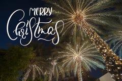 背景与文本圣诞快乐的棕榈树 书法和字法 免版税库存照片