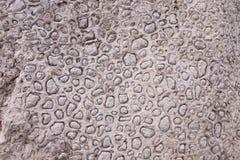 背景东部中间石纹理 免版税库存照片