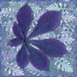 背景五颜六色的叶子 免版税库存照片