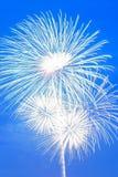 背景五颜六色的夏天烟花显示 库存照片