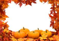 背景五颜六色的秋天框架 库存图片