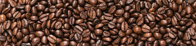 背景全景豆咖啡 免版税库存图片
