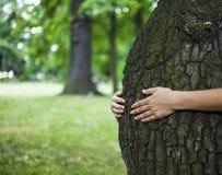 背景关心概念环境查出小的作为结构树白色 库存图片