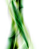 背景典雅的绿色 库存例证