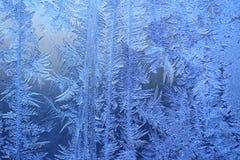 背景冬天 免版税库存照片