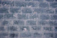 背景冰纹理墙壁 图库摄影