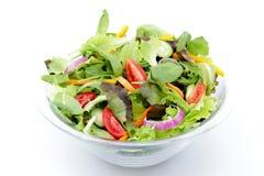 背景凉拌生菜白色 免版税库存图片