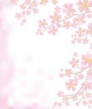 背景分支开花的春天 库存例证