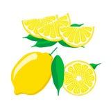 背景剪切柠檬对象空白全部 免版税库存照片
