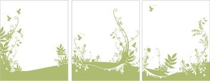 背景动物区系植物群 免版税库存图片
