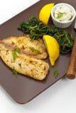 背景另外内圆角鱼食物图象系列白色 免版税库存图片