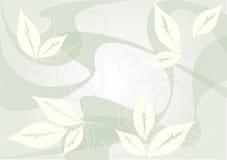 背景叶子 免版税库存照片