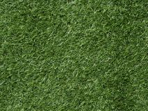 背景和纹理绿草领域 库存照片